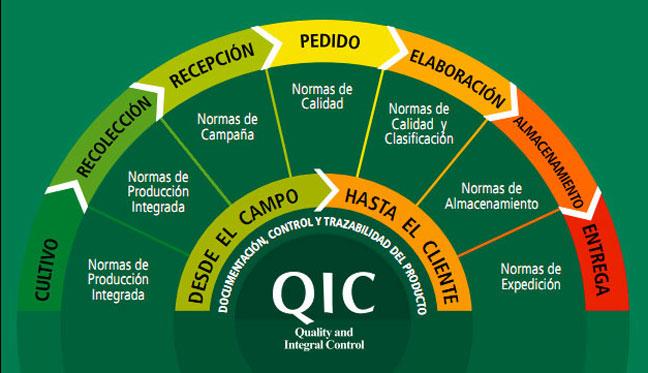 Modelo QIC