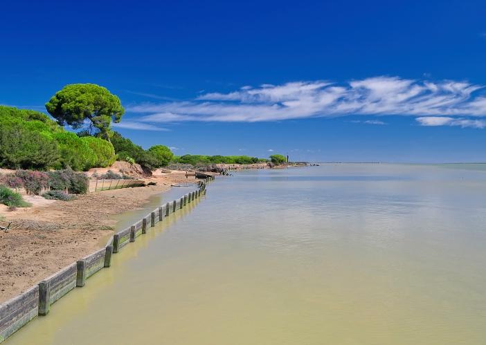 Parque-natural-Doñana