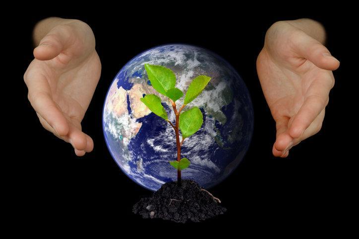 día.mundial-del-medio-ambiente