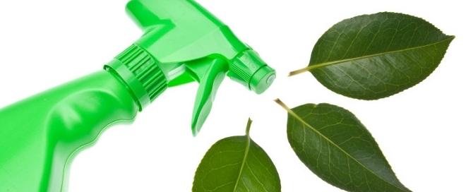 Productos ecol gicos archivos ecolobox - Productos de limpieza ecologicos ...